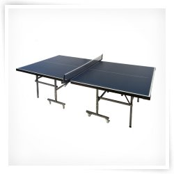 Lion Sports Fusion Table Tennis Table